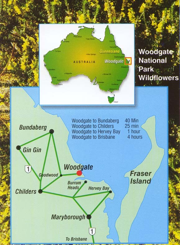 First National Real Estate Woodgate Beach Maps