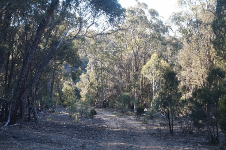 Lot 269 Fernleigh Close, off Windellama Road via