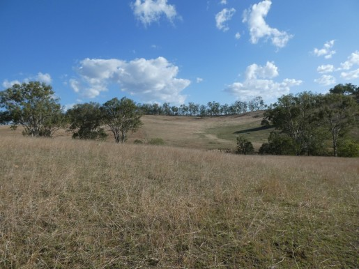 266 ROCKY CREEK ROAD MOUNT PERRY - Sale - First National Real Estate Childers