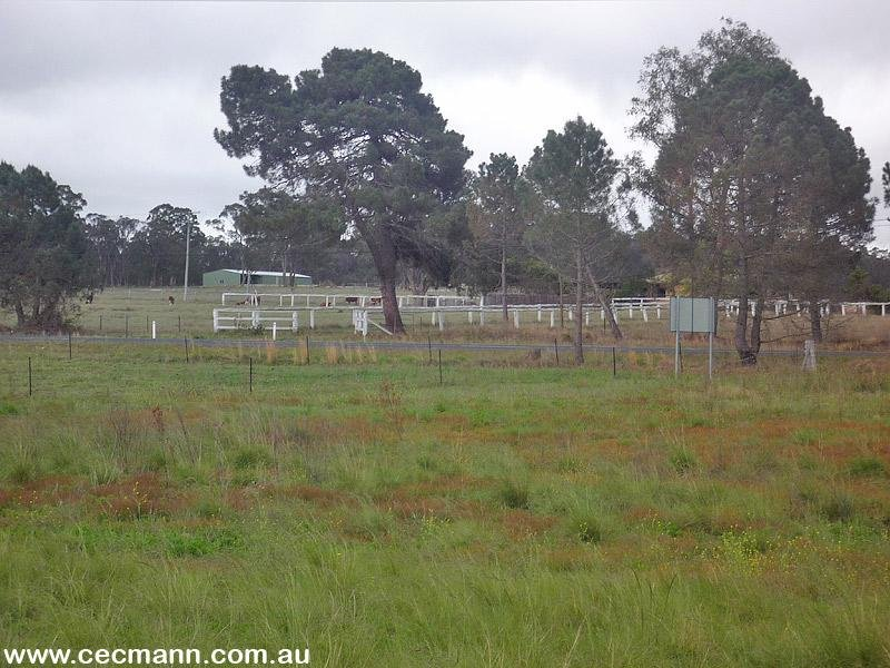 Lot 4 Texas Road STANTHORPE