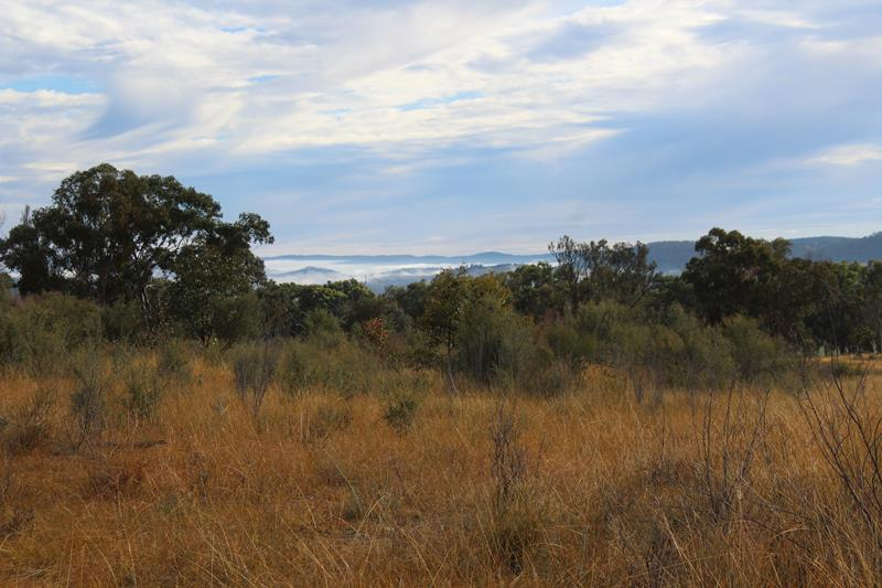 Lot 81 New England Highway WYBERBA