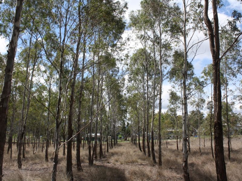 Lot 306 Whites Road MARYVALE