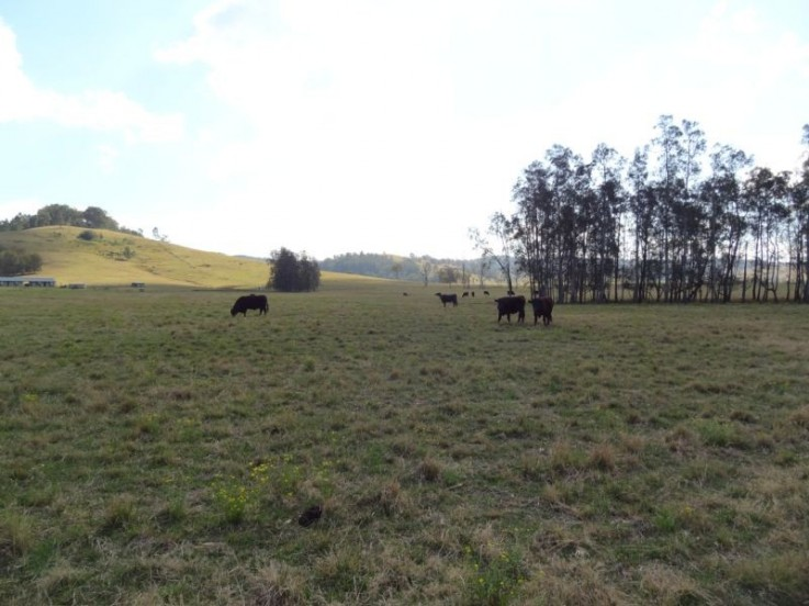 Lot 32 Dungog Road