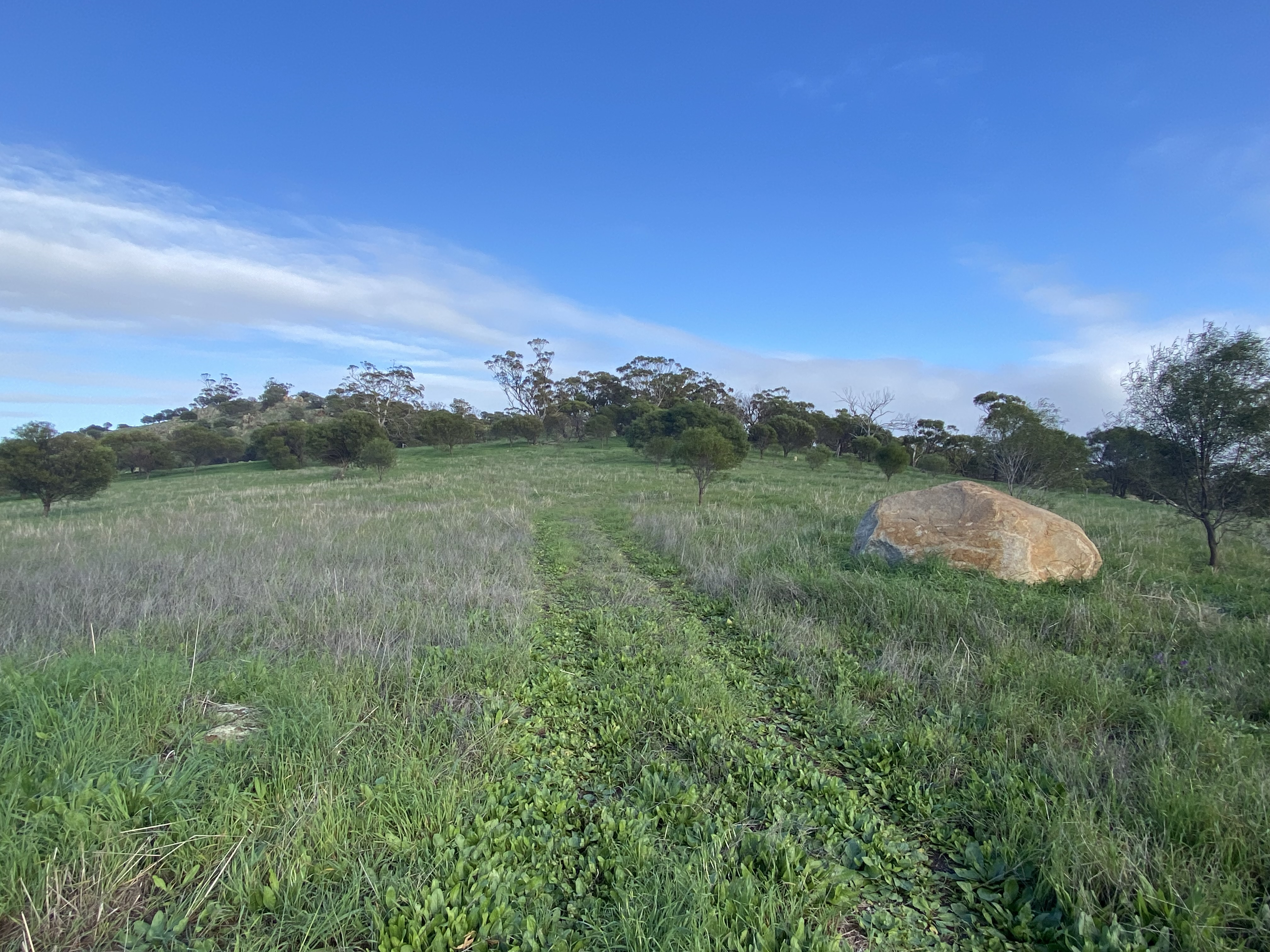 Lot 121 Whitfield Rd TOODYAY
