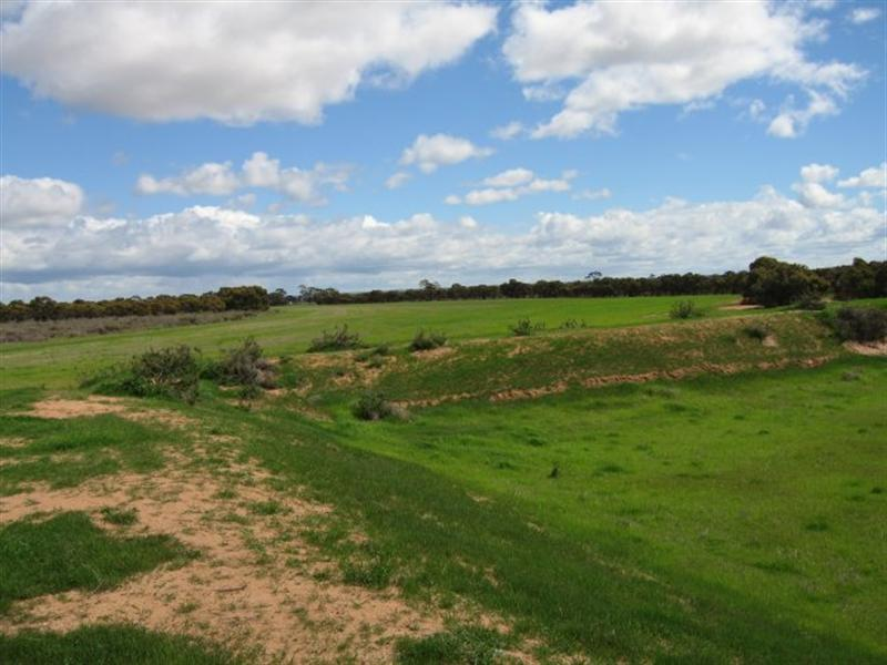 Lot 2 Goldfield Road MERREDIN