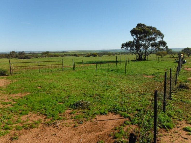 Lot 1340 Daddow Road