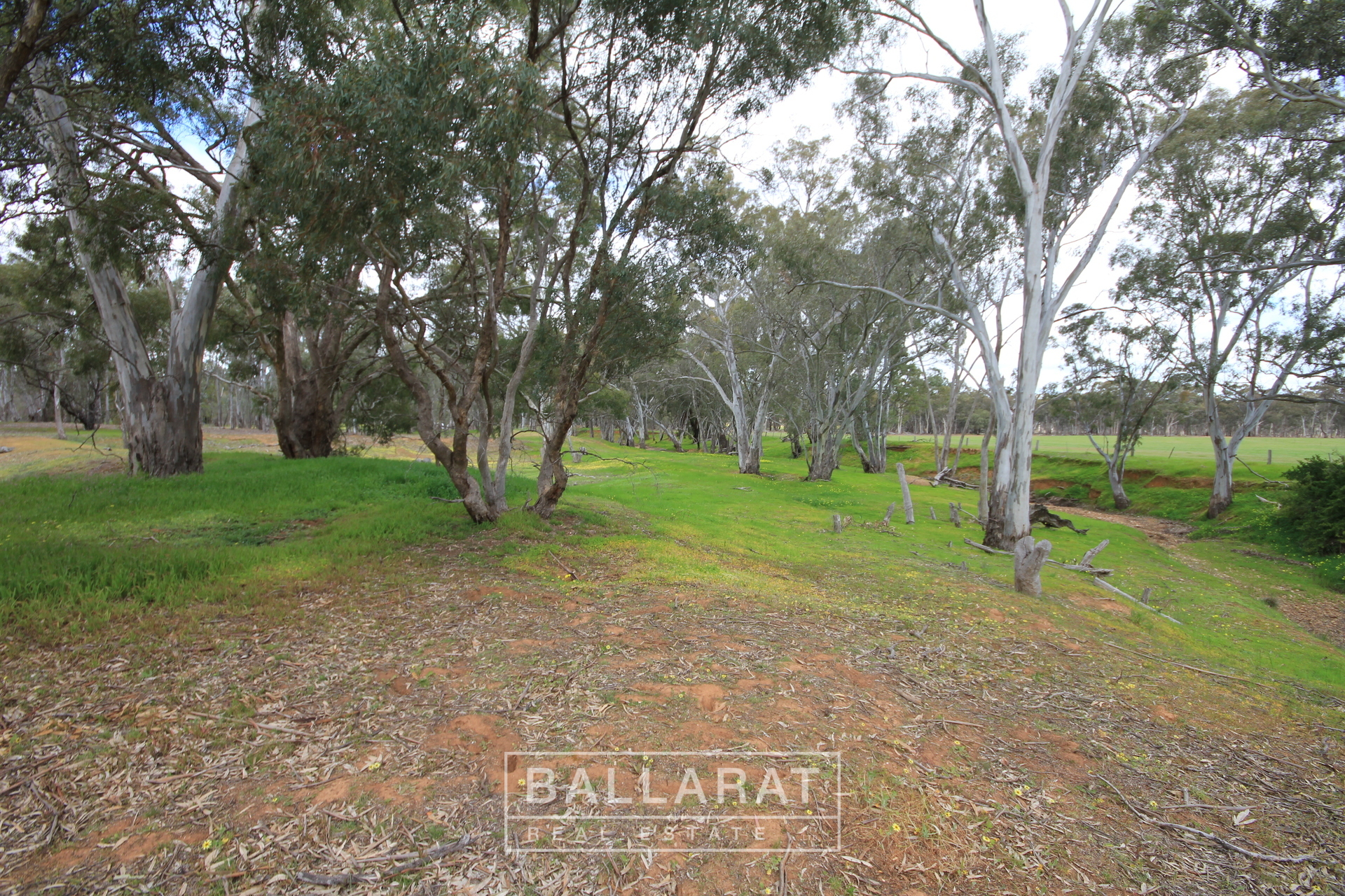 449-453 Dunolly - Moliagul Road Dunolly