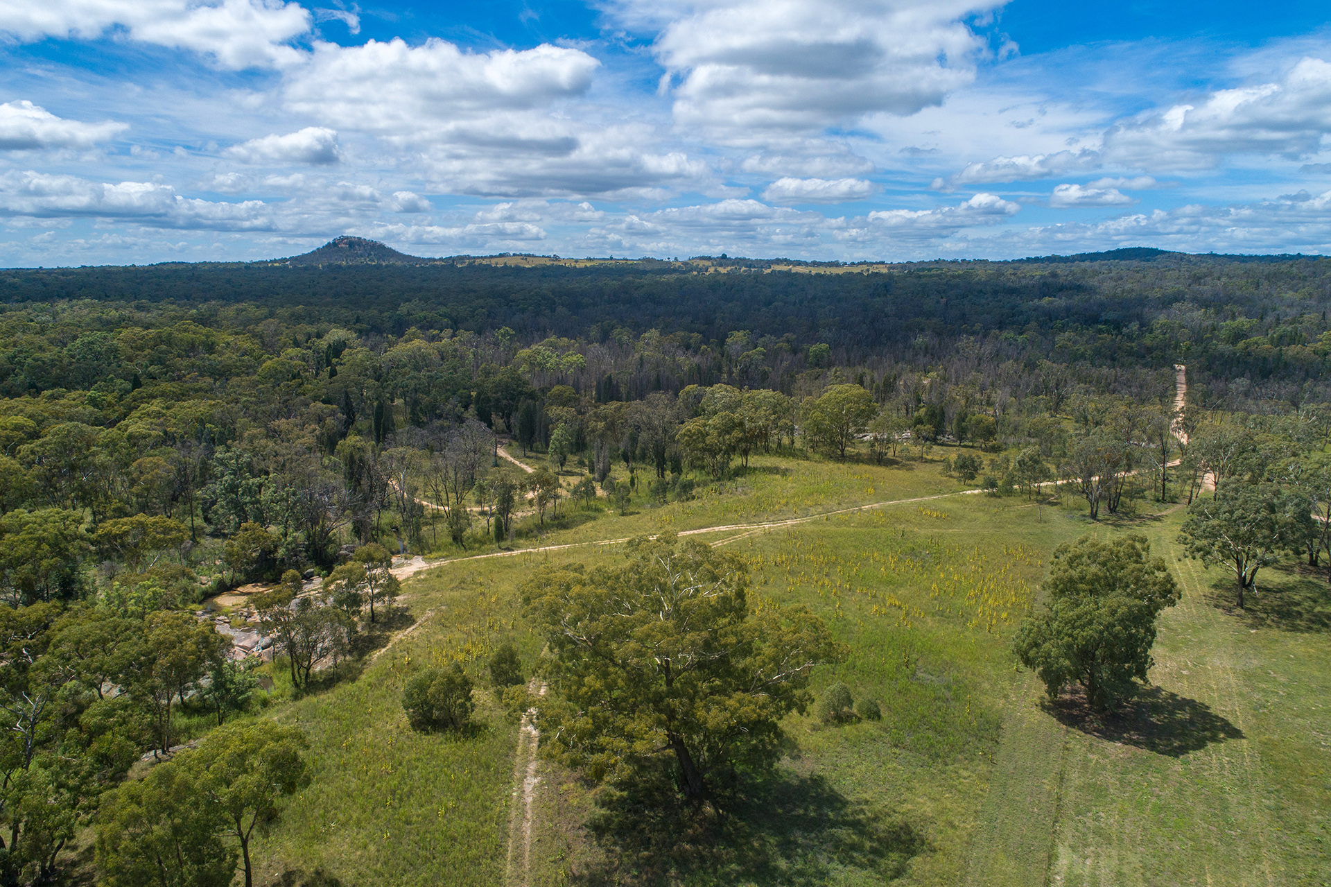 1477 Spring Creek Road MUDGEE