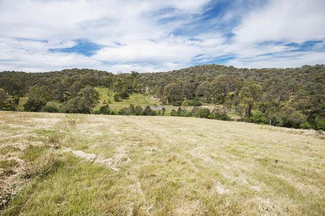 Lot 19 Rusty Gate Crt. DIAMOND CREEK
