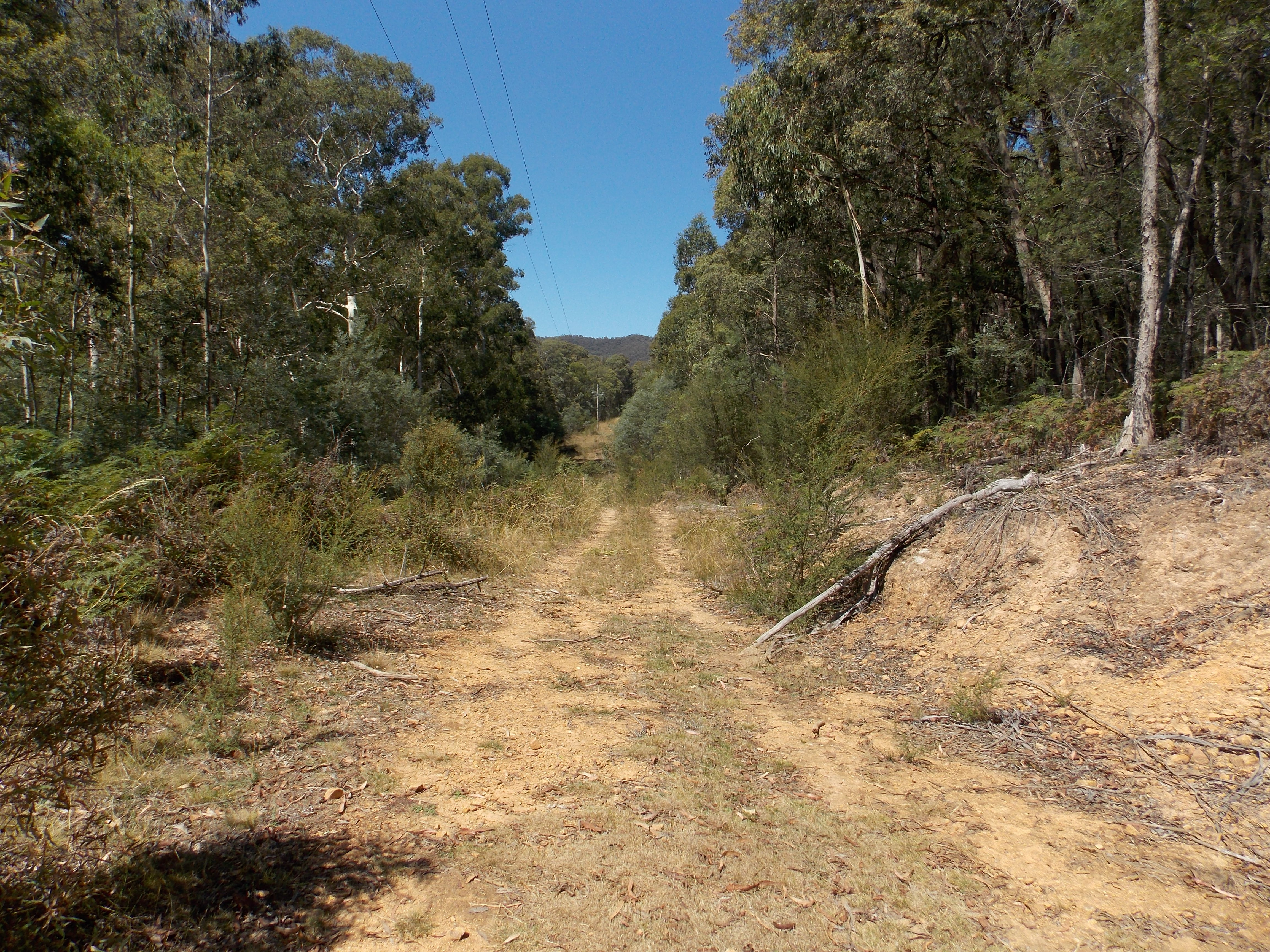 Lot 1/4946 Mansfield-Woods Point Road KEVINGTON