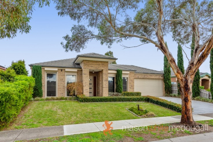 13 Kinglake Views