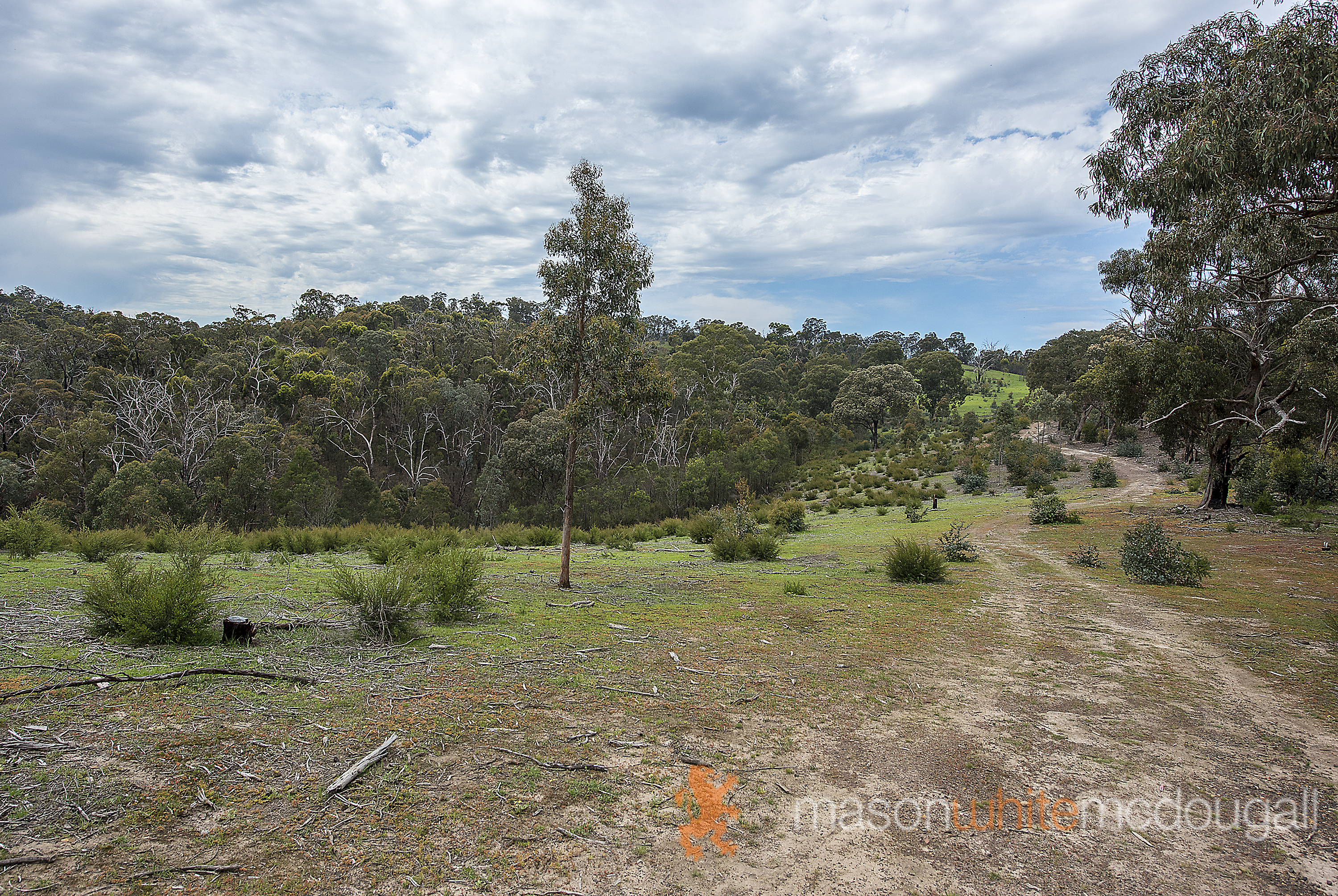 311 Wild Dog Creek Road ST ANDREWS