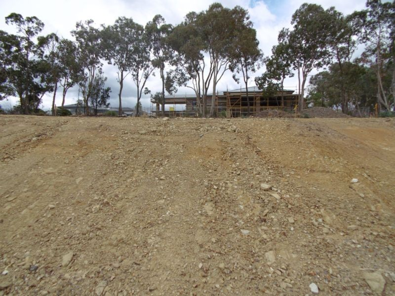 Lot 6 Magpie Court DIAMOND CREEK