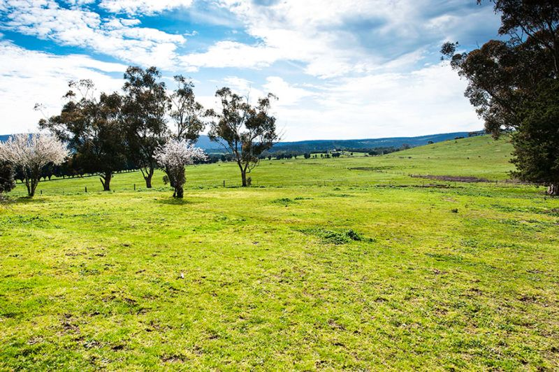 Lot 16/65 ridge rd WHITTLESEA
