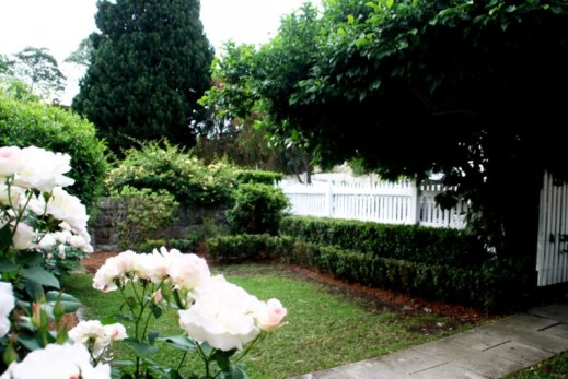 Rose garden at front
