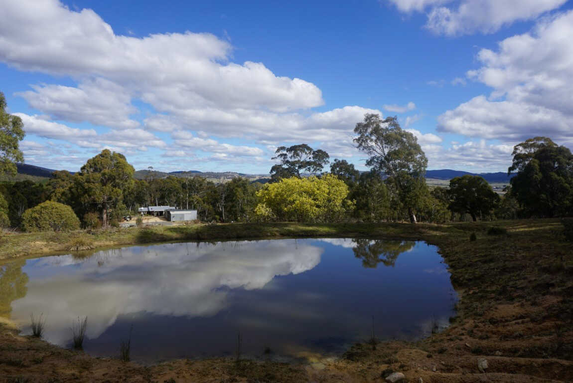 373 Foggy Forest Drive Anembo