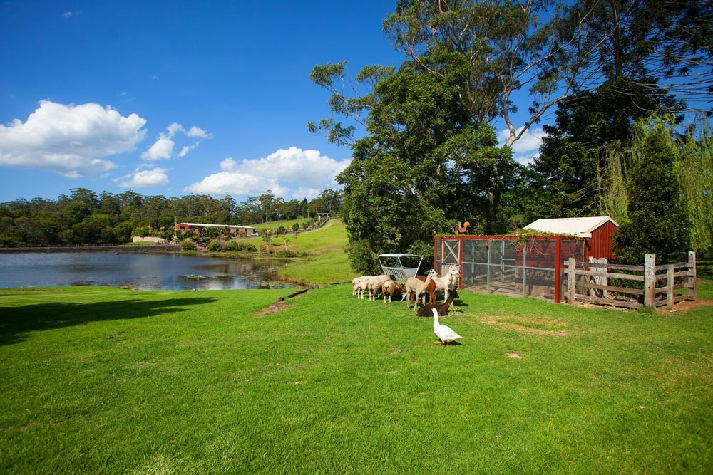566 Reesville Road MALENY