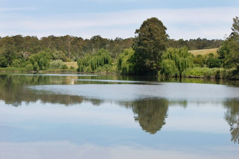Lot 10/1286 Limeburners Creek Road CLARENCE TOWN