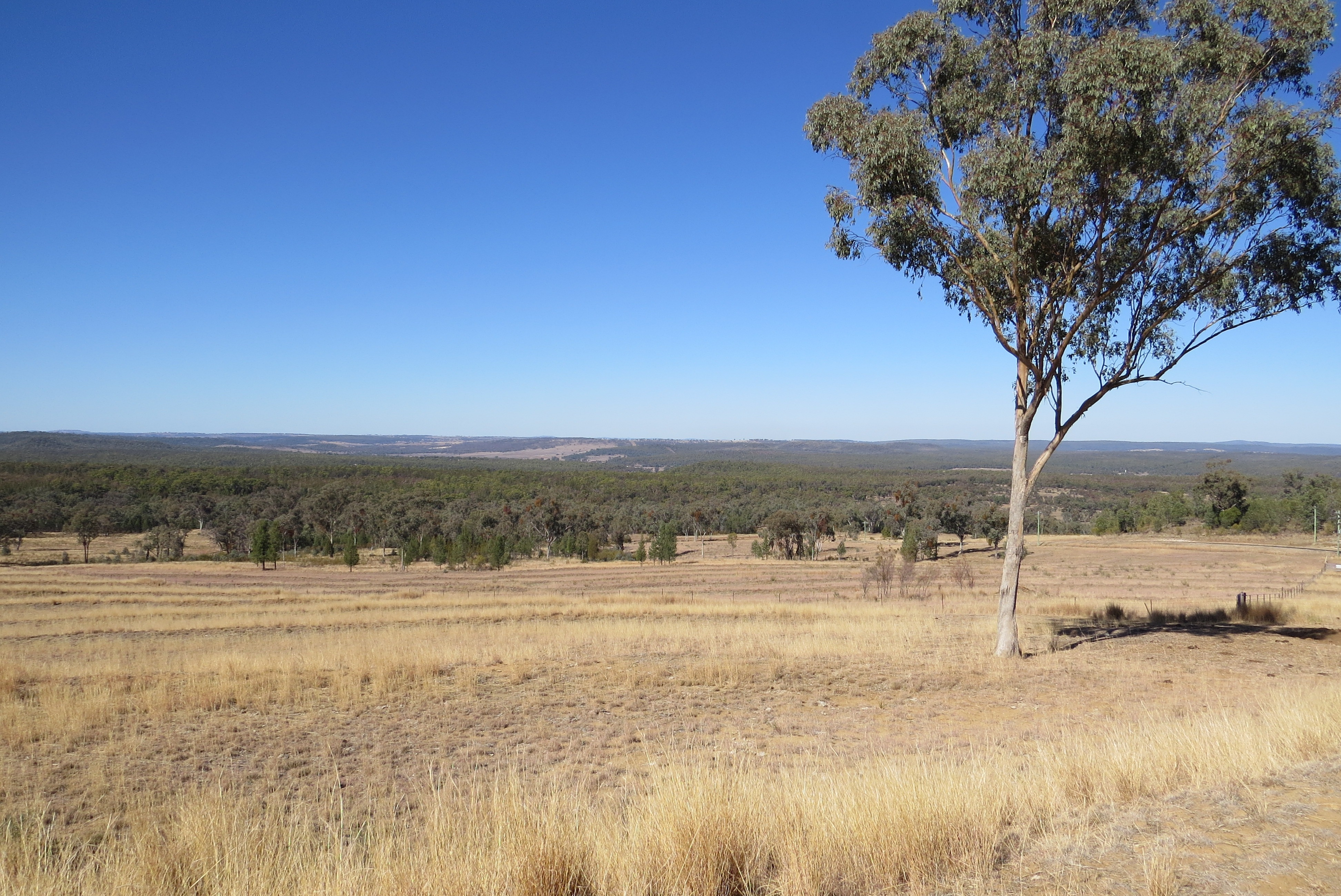 Lot 29 Burundah Mt Estate WARIALDA