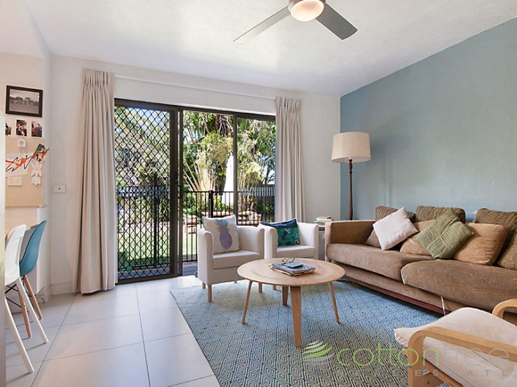 1/15 Cotton tree Pde