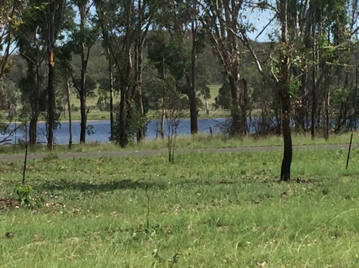 Lot 22/0 Memerambi Barkers Creek Rd