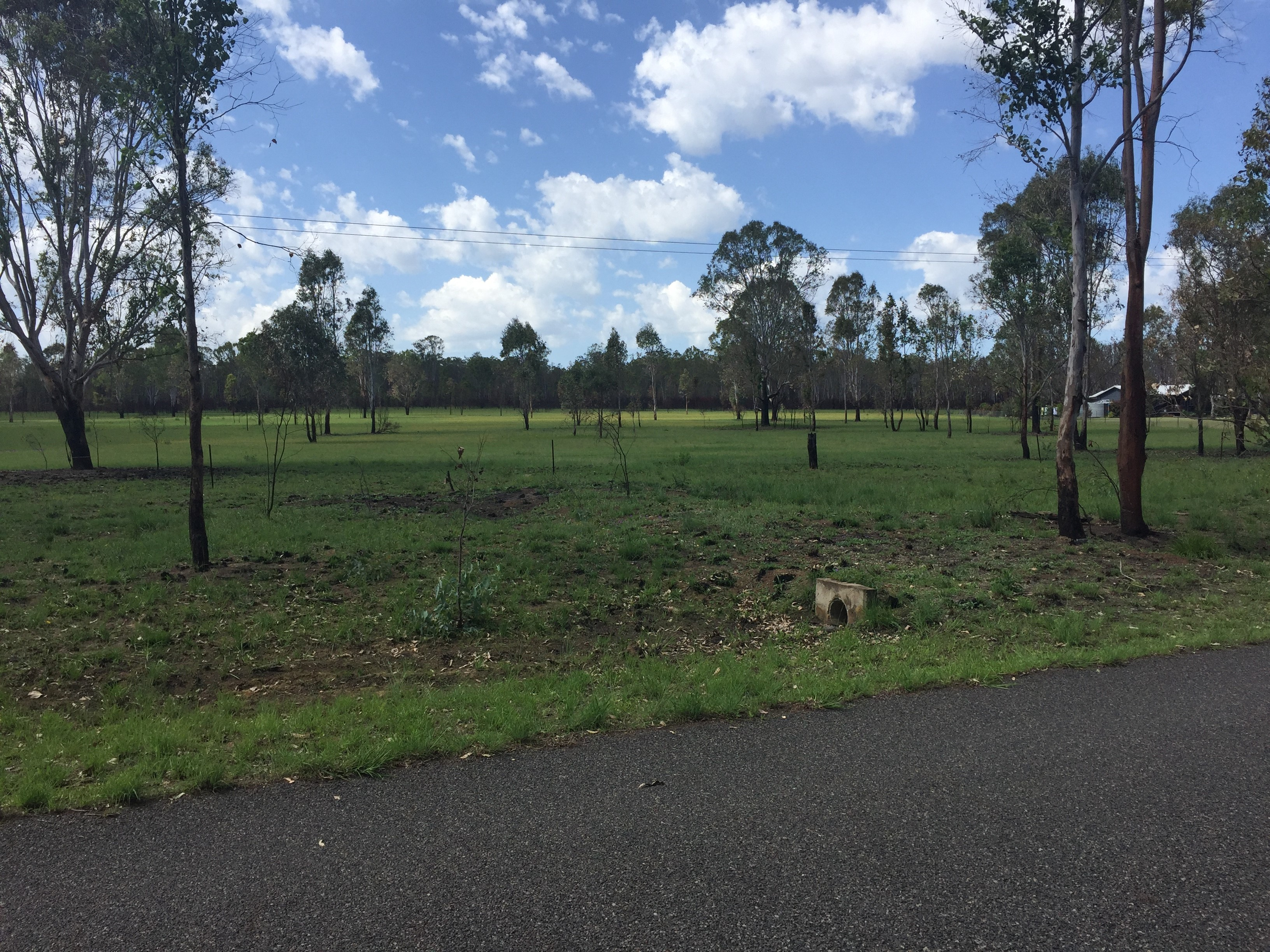Lot 22/0 Memerambi Barkers Creek Rd WATTLE CAMP