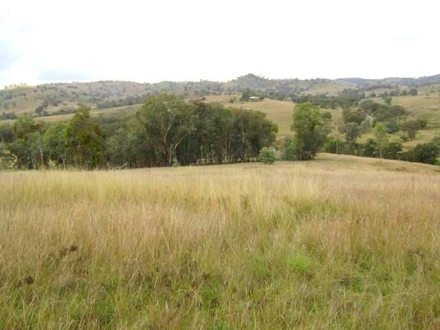 Lot 5 Mount McDonald Road COWRA