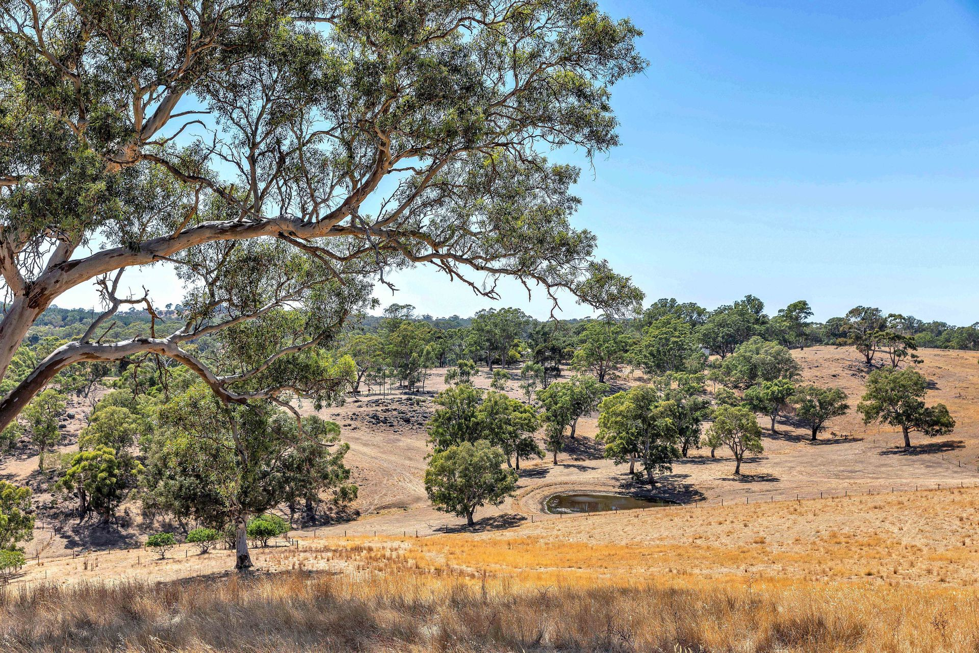 168 Cyanide Road Mount Torrens